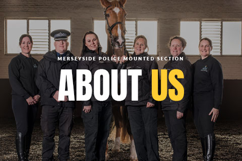 Merseyside Police Mounted Section - About Us