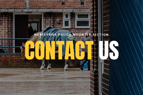 Merseyside Police Mounted Section - Contact Us