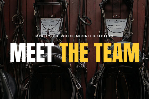 Merseyside Police Mounted Section - Meet The Team